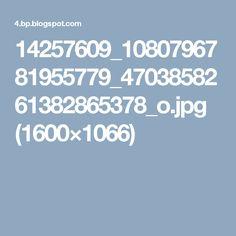 14257609_1080796781955779_4703858261382865378_o.jpg (1600×1066)