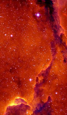Elephant's Trunk Nebula.
