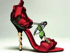 Rose heels... I think I saw something that said these are one of the most expensive shoes in the world but I'm not sure