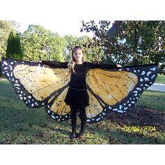 very fine wings