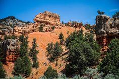 Paisajes alucinantes puedes conocer en #Arizona y #Nevada. Sin lugar a dudas, la gran maravilla natural es el Gran Cañón del Colorado.