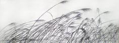 Draw Espigas, dibujo a lápiz By María Reboredo