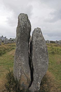 Un menhir fendu dans les alignements à Carnac (56) France