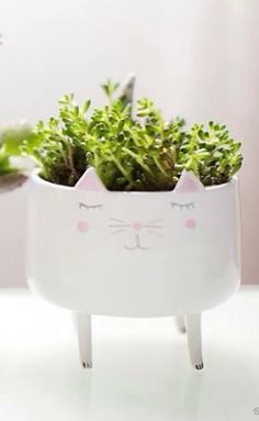 idea for kitty trinkets dish from Anthropologie Gifts For Pet Lovers, Flowers Nature, My Dream Home, Container Gardening, Indoor Plants, House Plants, Home Accessories, Nest, Flora