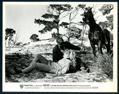 TROY DONAHUE CONNIE STEVENS in Susan Slade '61 HORSE   eBay