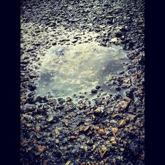 D8: Aigua #15dias15fotos