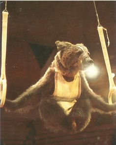 Russian Circus Bear by Lalaland Chelsey, via Flickr