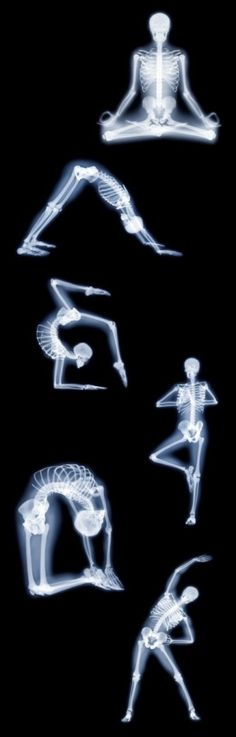 skeletal view X-ray meets yoga #awesome best combo :)