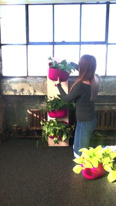 -by-step instructions on how to create an easy-to-move vertical garden display without drilling holes in your walls. A perfect afternoon project for one - or bring a friend and make one for each of you! Jardin Vertical Diy, Vertical Succulent Gardens, Vertical Garden Wall, Le Hangar, Desert Backyard, Tower Garden, Plant Wall, Zz Plant, Succulents Diy
