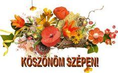 Happy Birthday, Hungary, Happy Brithday, Urari La Multi Ani, Happy Birthday Funny, Happy Birth