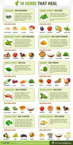 10 Herbs tha Heal (Pic) & Bonus: 5 Herbs to Promote Your Weight Loss (Link)