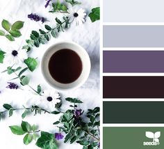 color serve - color palette from Design Seeds Colour Pallette, Color Palate, Colour Schemes, Color Patterns, Color Combos, Design Seeds, Monochrom, World Of Color, Color Swatches