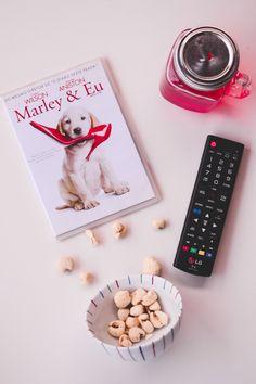 Cinco filmes sobre cachorros  | O Mundo de Jess