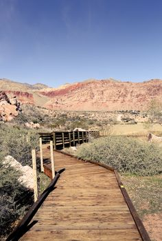 Calico Basin Red Springs - great place for photosessions in Las Vegas — artsy daria photography