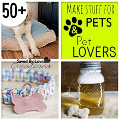 DIY Things to Make for Pets and Pet Lovers