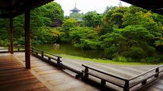 京都仁和寺の御殿北庭と五重塔と賞賛に値する青もみじと新緑