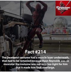 Deadpool << If this is true, maybe he could've looked more like a Liefeld drawing. Marvel Funny, Marvel Memes, Marvel Dc Comics, Marvel Avengers, Marvel Facts, Deadpool Facts, Deadpool Movie, Deadpool Quotes, Deadpool Costume