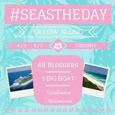Dream Brandcation Aboard Royal Caribbean Liberty of the Seas.   Would you like to see your brand or company hit the social media waves during our Brandcation? Contact me, I'd love to help promote your company!  #Brandcation #SeasTheDay #BlogCruise #Travel #PR