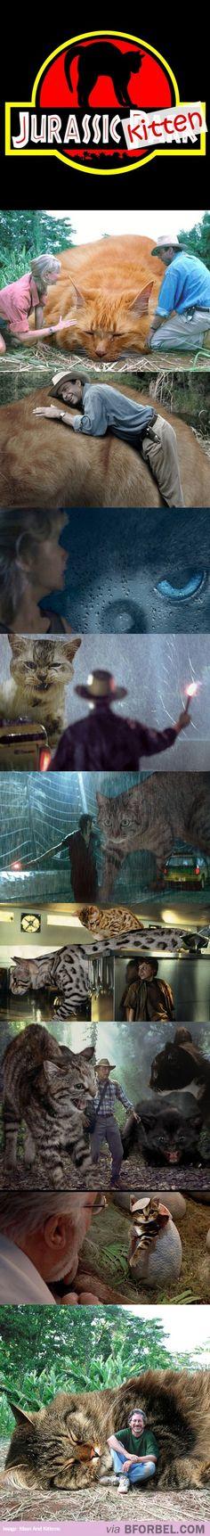 Jurassic Kitten…