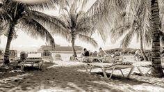 On instagram by nicolacortesi83 #landscape #contratahotel (o) http://ift.tt/2rUGXeh  #rclcrewlife #navigatoroftheseas #haiti #shadows #palmtrees #beach #postcard #blackandwhite