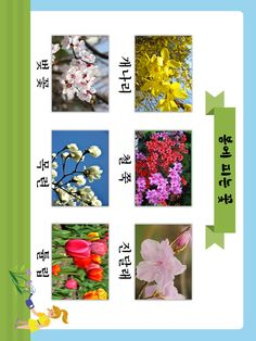 Learn Korean, Spring Crafts, Floral Tie, Art For Kids, Language, Classroom, Diy Crafts, Scrapbook, Education