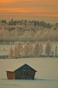 Log Barn In The Snow.
