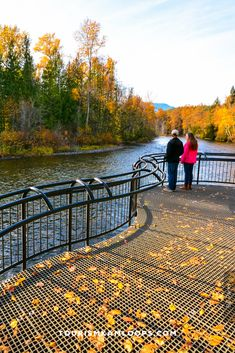 Spend the crisp fall days of Kamloops hiking trails with the best golden hues of autumn. Here are 5 of the top accessible trails that are relatively wide and flat for the whole family. Forest Trail, River Trail, Pine Forest, Sunset Valley, Amazing Pumpkin Carving, Salmon Run, Sockeye Salmon, Riverside Park, 400m