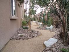 1000 images about desertscape landscaping ideas on for Garden design las vegas