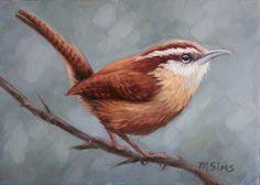 Carolina wren - Wren - bird painting - wren print - Open edition print by MollySimsFineArt on Etsy