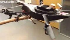 Nueva generación de drones intenta imitar a la naturaleza