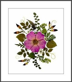 Original Pressed Flower Art | Green Mountain Pressed Flowers