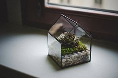 Glass Terrarium Small House, Stained glass decoration, Home decor, Planter for indoor gardening