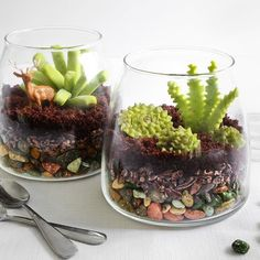 Chocolate candy terrariums! Totally edible with chocolate rocks, cacao nibs, crumbled chocolate cupcake 'soil' and candy succulents. Check out the tutorial on the @etsy blog!
