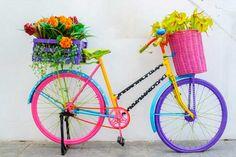 Ofertas de flores para as férias de Julho
