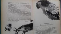 1966-L'Albero del Riccio drawing