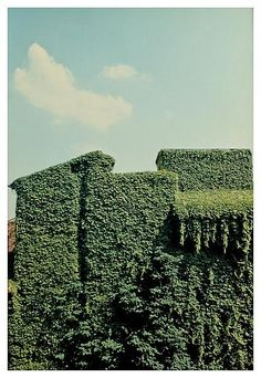 Luigi Ghirri, Ferrara, 1981, C-print, 9 1/2 x 6 1/4 inches; 24 x 16 cm