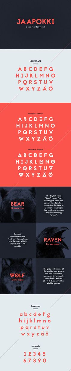 Best Free Fonts for Web Design # 66
