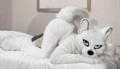 #furries #furry #anthro #fursuit #costume #subculture #nerdy #cute