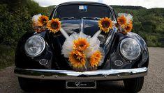 Prodotti per Addobbi Cerimonia - Addobbi Auto - accessori e gadget per matrimoni e feste - E-speciale