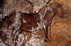 Niaux Cave in France with rock art of horses