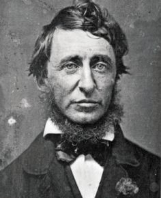 Thoreau, the Woods & a Cure for Modern Life. ~ Jim Tolstrup  on Feb 19, 2012
