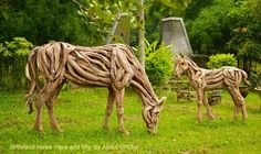 Driftwood sculptures - traditional - garden sculptures - other metro - Abdul Ghofur