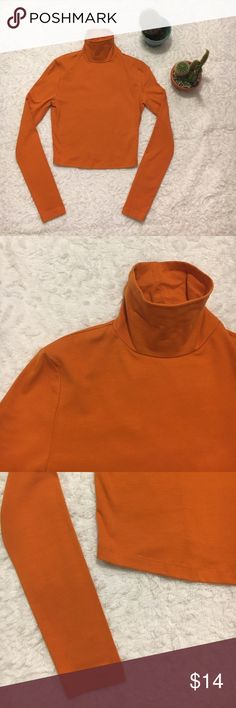 Orange Turtle Neck Crop Top (Small) NWOT Orange Turtle Neck crop top. Size Small. Bundle 3 for 15% off. Make me an offer 💋 Forever 21 Tops Tees - Long Sleeve
