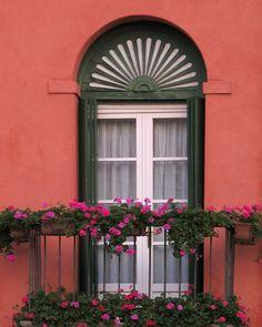 Balcony and Geraniums in Bassano