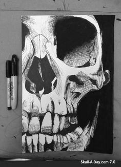 Skull-A-Day: Sharp Looking Sharpie Skull