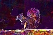 "New artwork for sale! - "" Animal Rodent Squirrel Eastern Gray  by PixBreak Art "" - http://ift.tt/2v3SXyp"