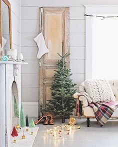 old wooden door // small Christmas tree