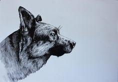 Medium: Pen on Paper Dimensions: x 21 xm (L x W) Pet Dogs, Pets, Paper Dimensions, Affordable Art, Crazy Cats, Pet Portraits, Online Art, My Friend, Moose Art