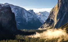 Download wallpapers America, Yosemite Valley, morning, forest, american landmarks, Yosemite National Park, California, USA, mountains