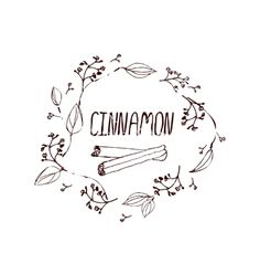 Herbs and spices collection - cinnamon vector 4070083 - by Lillia on VectorStock®